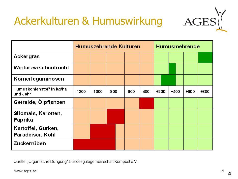 Ackerkulturen & Humuswirkung