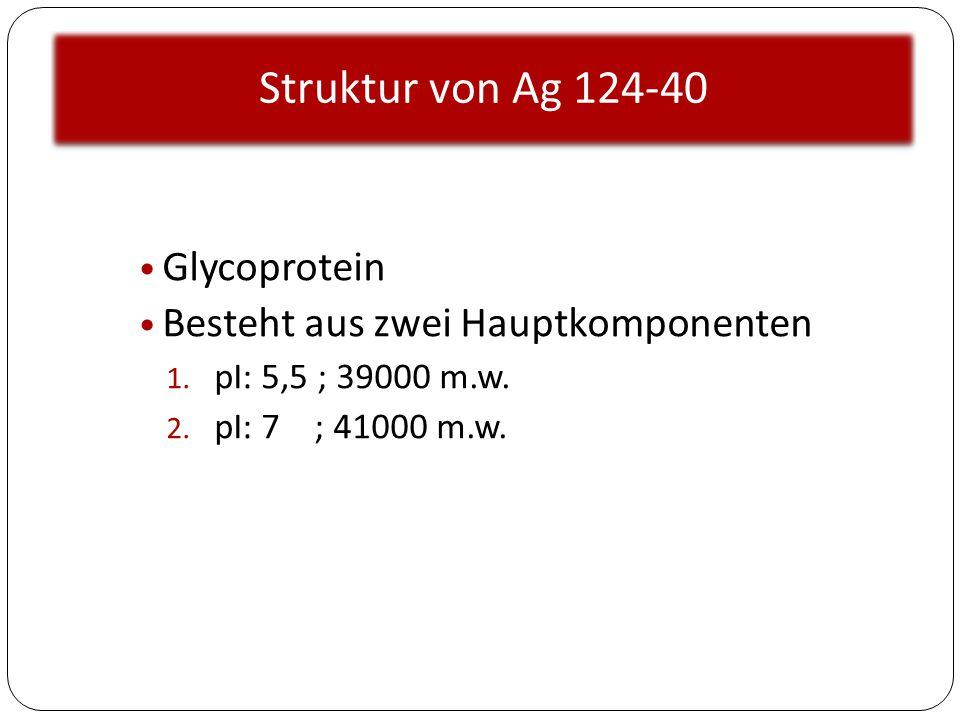 Struktur von Ag 124-40 Glycoprotein Besteht aus zwei Hauptkomponenten