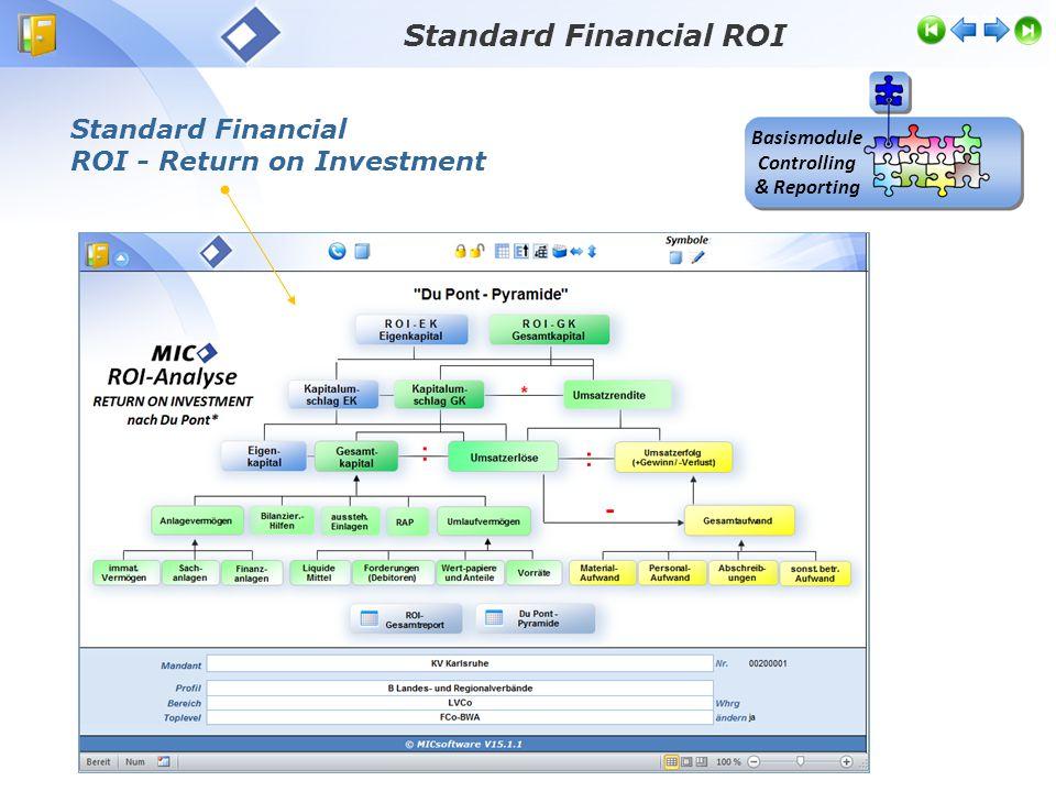 Standard Financial ROI Basismodule Controlling