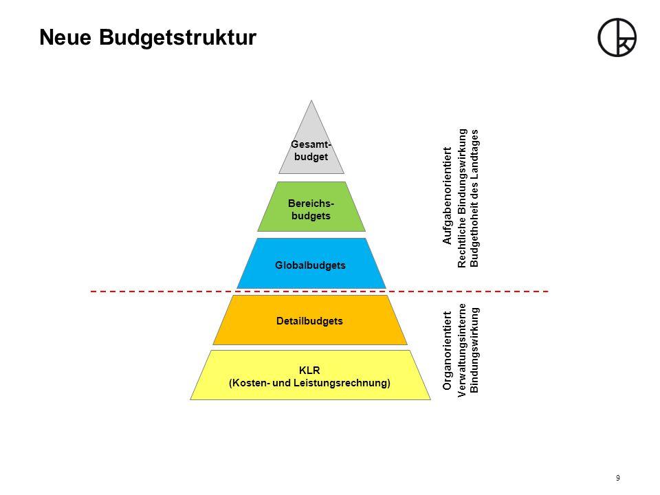 Neue Budgetstruktur Aufgabenorientiert Organorientiert Gesamt-budget