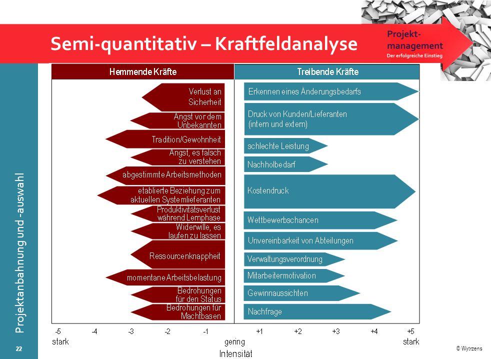 Semi-quantitativ – Kraftfeldanalyse