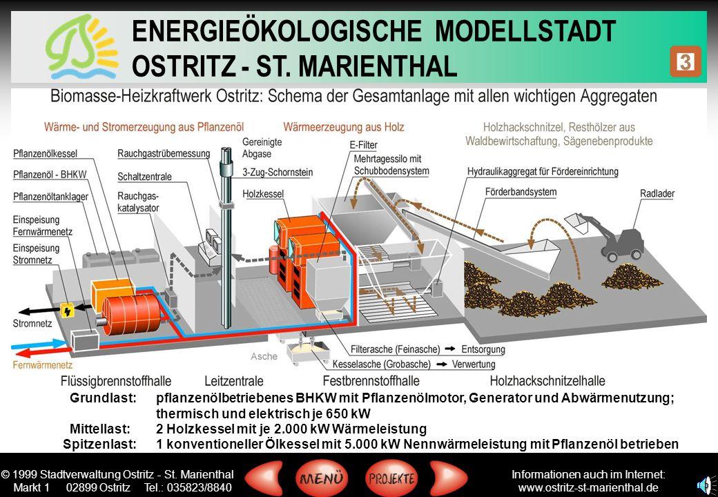 Grundlast: pflanzenölbetriebenes BHKW mit Pflanzenölmotor, Generator und Abwärmenutzung;