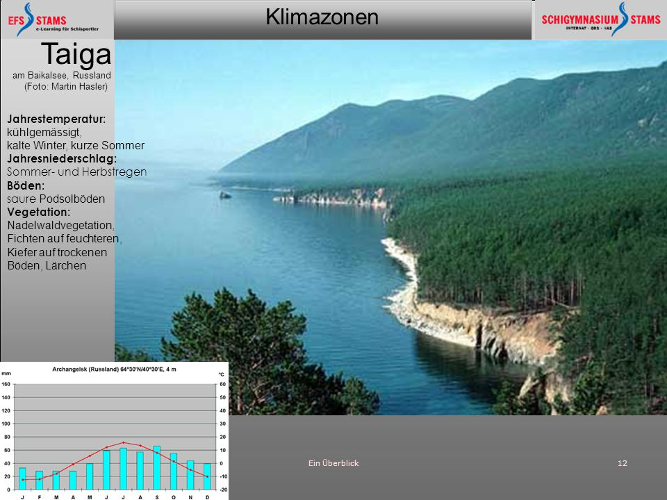 Taiga Jahrestemperatur: kühlgemässigt, kalte Winter, kurze Sommer