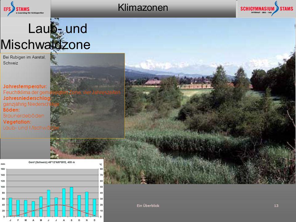 Laub- und Mischwaldzone Jahrestemperatur: