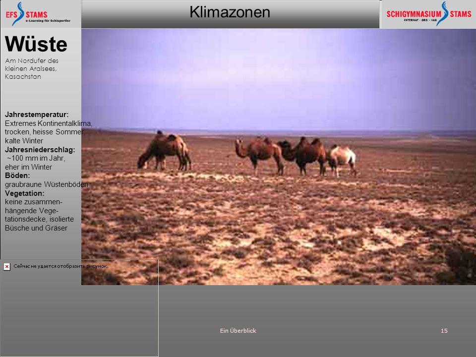 Wüste Jahrestemperatur: Extremes Kontinentalklima,