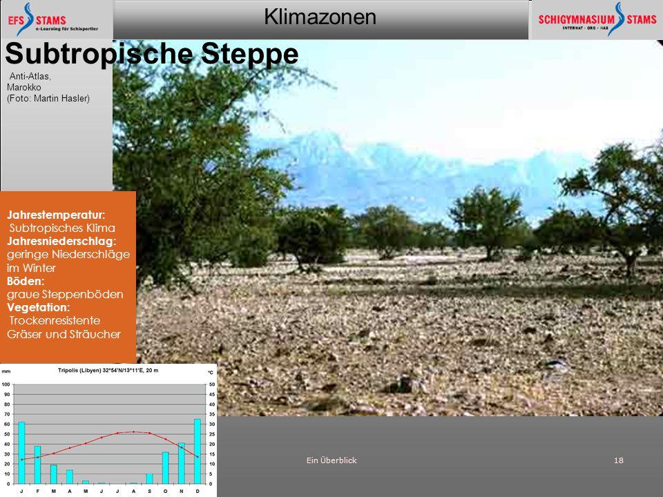Subtropische Steppe Anti-Atlas, Jahrestemperatur: Subtropisches Klima