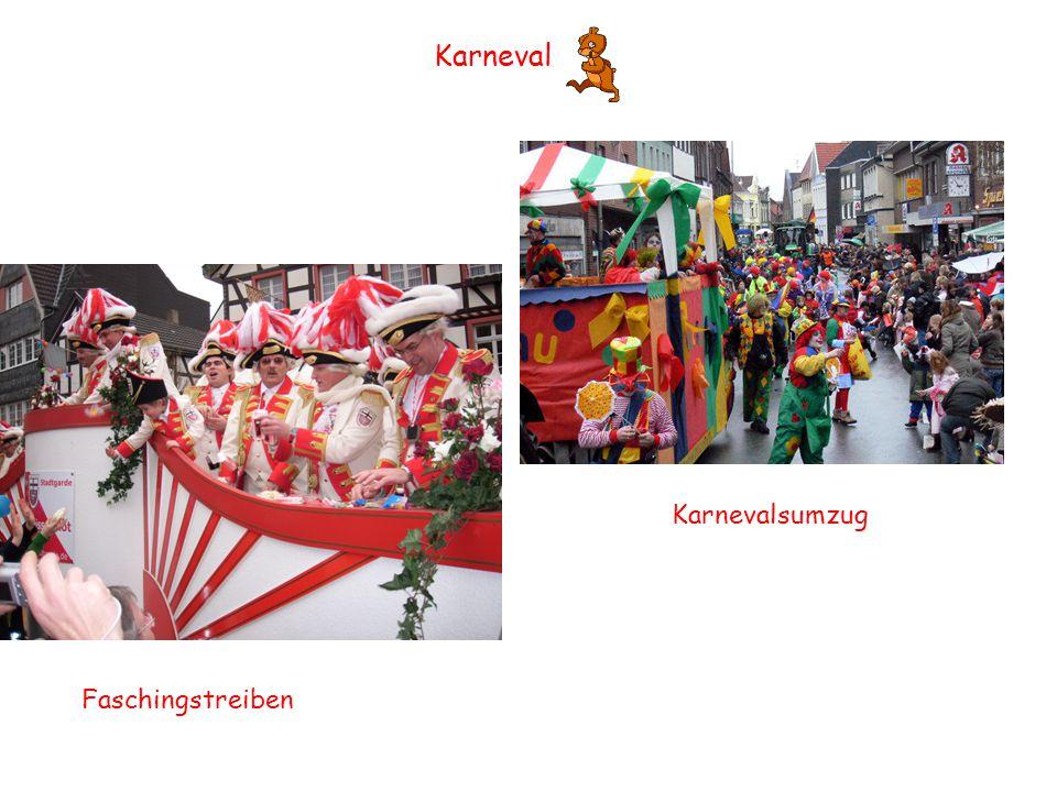 Karneval Karnevalsumzug Faschingstreiben
