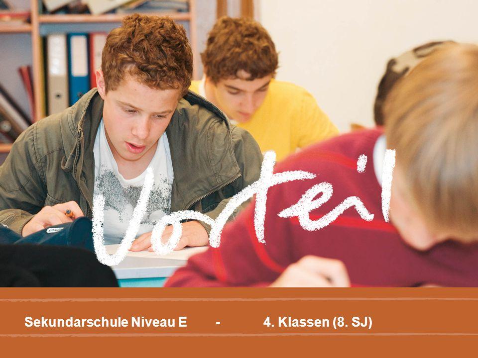 Sekundarschule Niveau E - 4. Klassen (8. SJ)