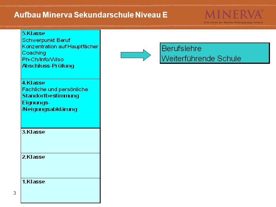 Aufbau Minerva Sekundarschule Niveau E