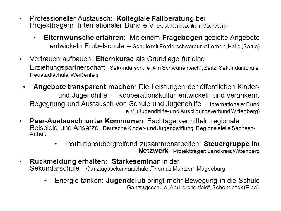 Professioneller Austausch: Kollegiale Fallberatung bei Projektträgern Internationaler Bund e.V. (Ausbildungszentrum Magdeburg)