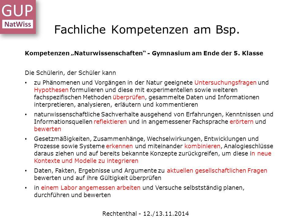 Fachliche Kompetenzen am Bsp.