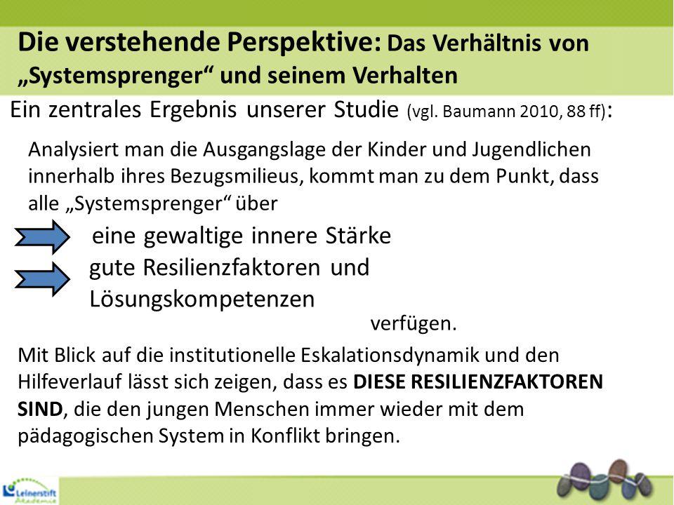 """Die verstehende Perspektive: Das Verhältnis von """"Systemsprenger und seinem Verhalten"""