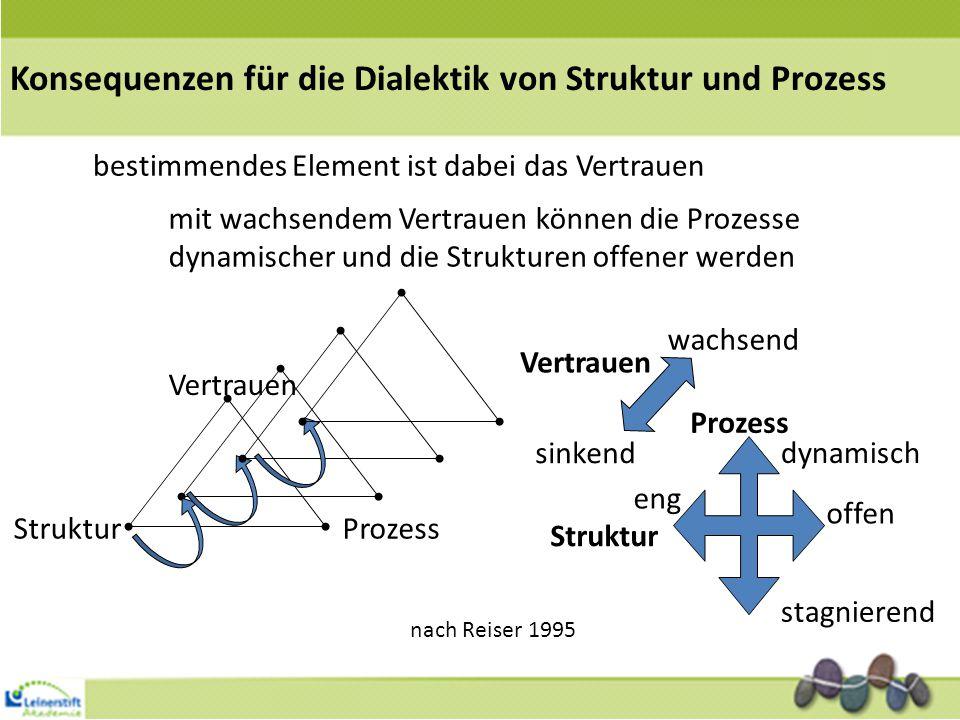 Konsequenzen für die Dialektik von Struktur und Prozess