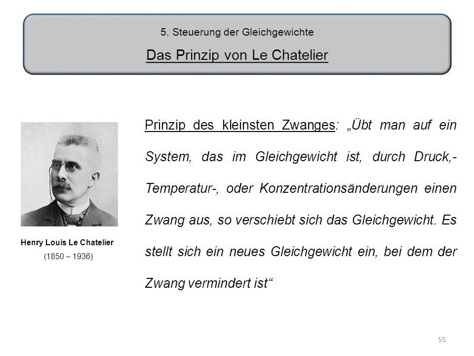 5. Steuerung der Gleichgewichte Das Prinzip von Le Chatelier