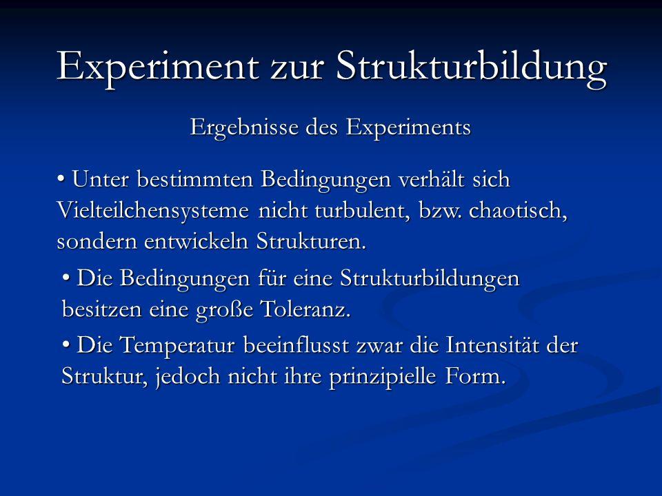 Resumé Experiment zur Strukturbildung Ergebnisse des Experiments
