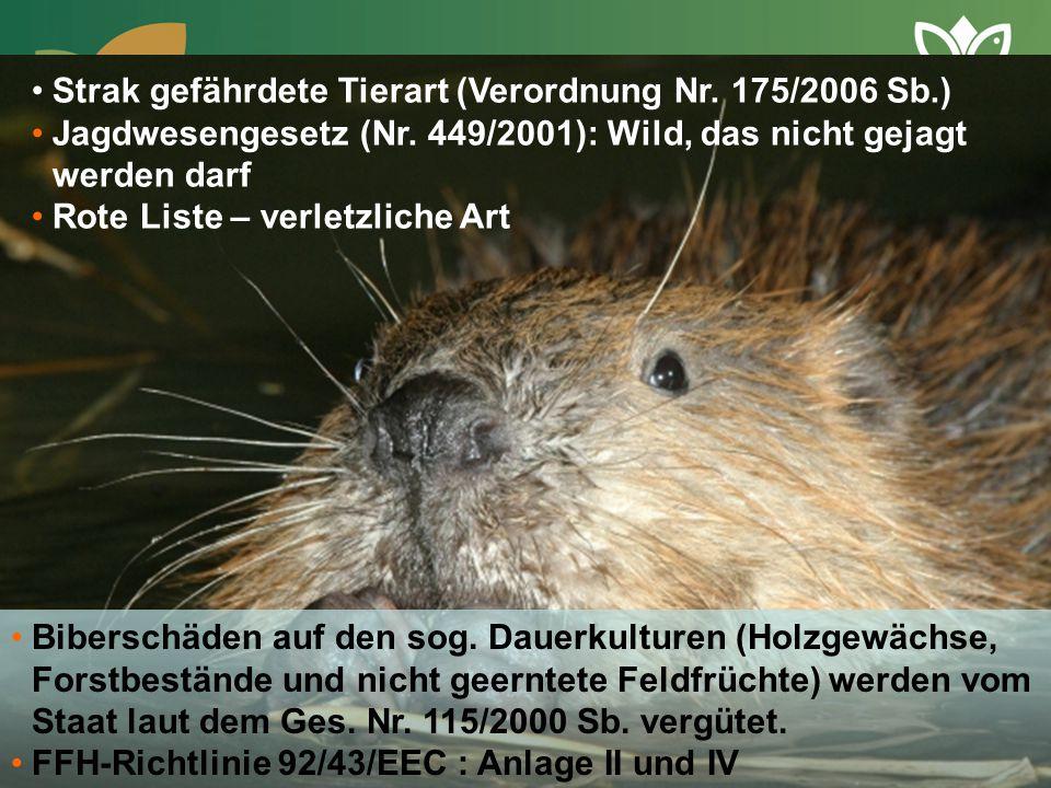 Strak gefährdete Tierart (Verordnung Nr. 175/2006 Sb.)