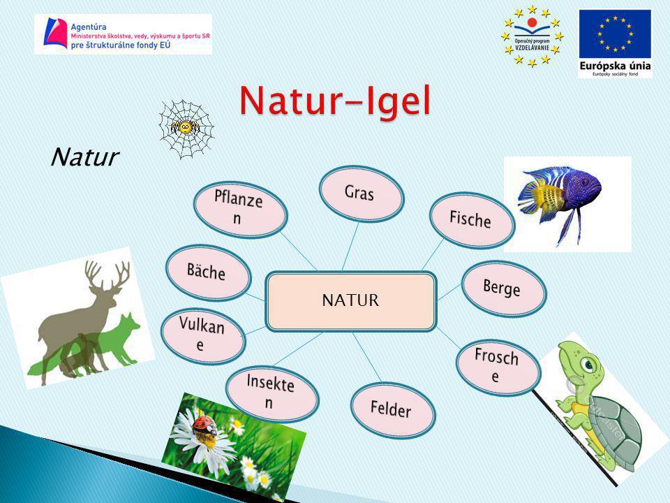 Natur-Igel Natur Gras Pflanzen Fische Bäche Berge NATUR Vulkane
