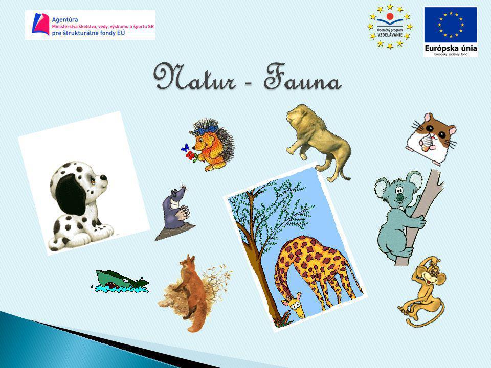 Natur - Fauna