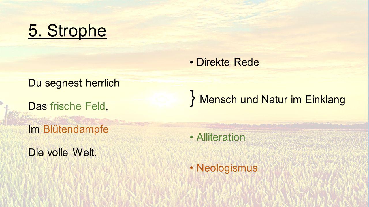 } Mensch und Natur im Einklang