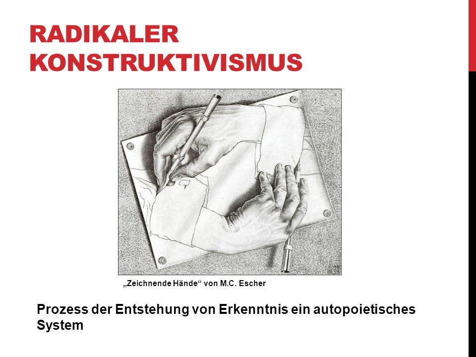 Radikaler Konstruktivismus