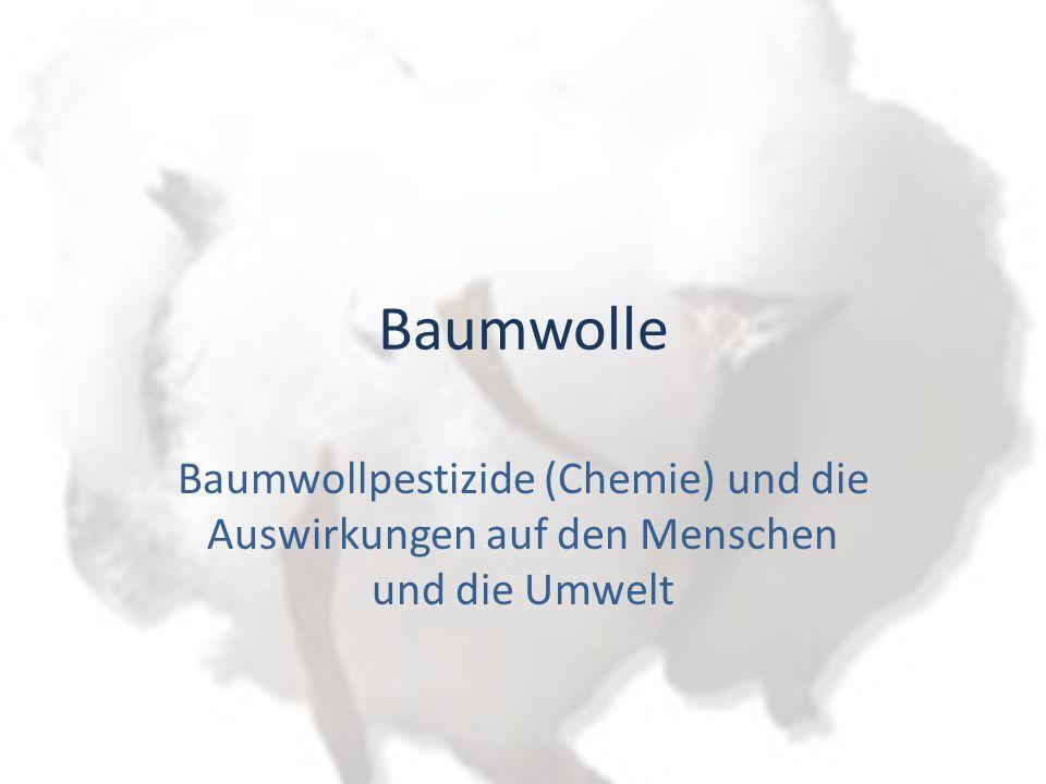 Baumwolle Baumwollpestizide (Chemie) und die Auswirkungen auf den Menschen und die Umwelt