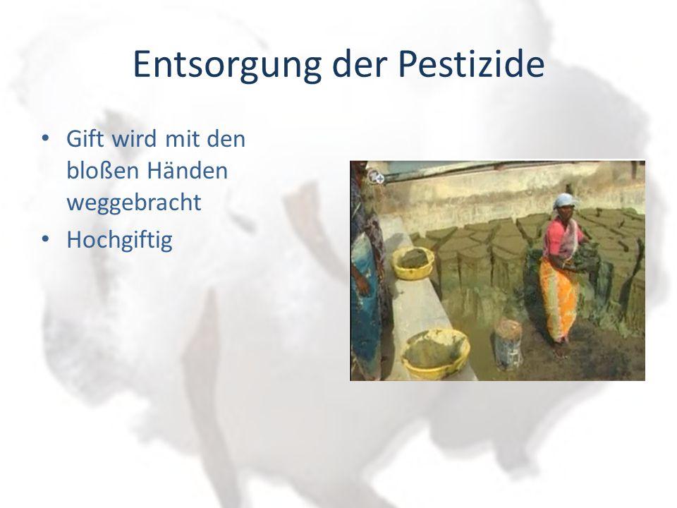 Entsorgung der Pestizide