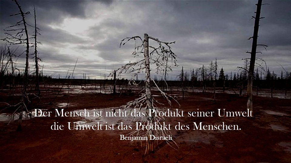 Der Mensch ist nicht das Produkt seiner Umwelt