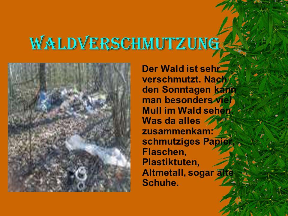 Waldverschmutzung