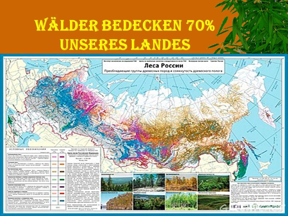 Wälder bedecken 70% UNSERES LANDES