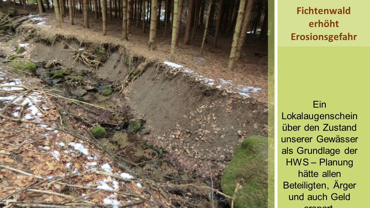 Fichtenwald erhöht Erosionsgefahr