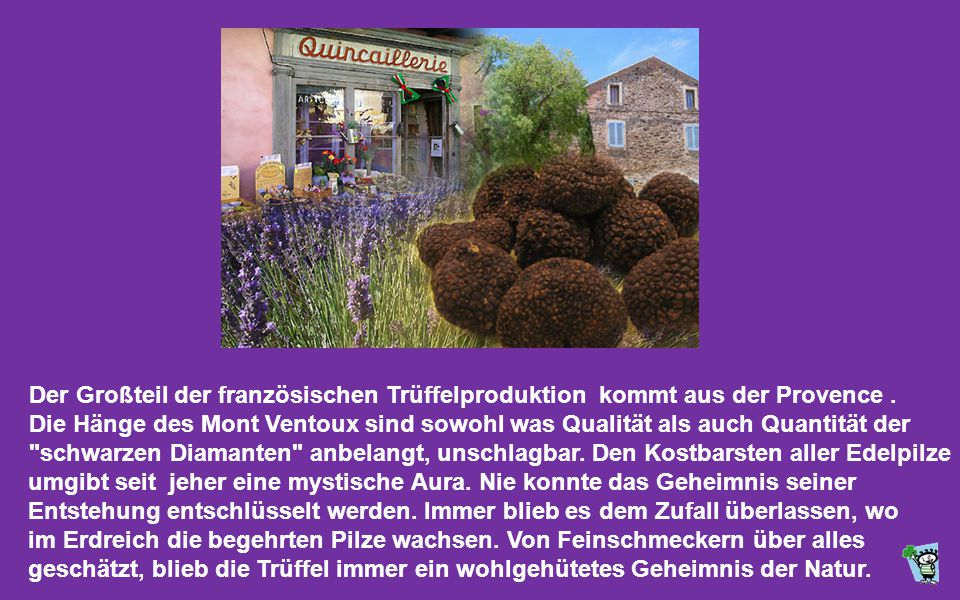 Der Großteil der französischen Trüffelproduktion kommt aus der Provence .