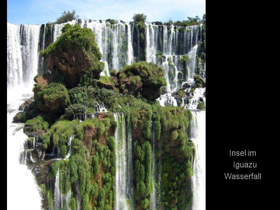 Insel im Iguazu Wasserfall