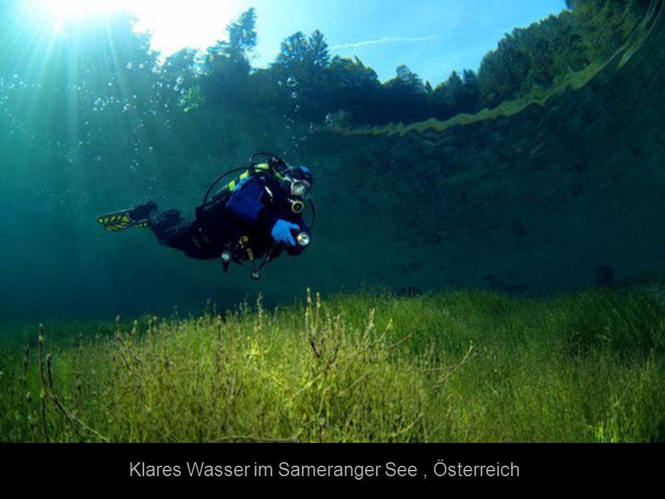 Klares Wasser im Sameranger See , Österreich