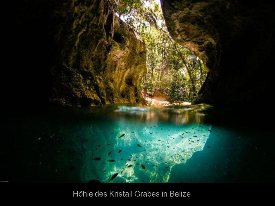 Höhle des Kristall Grabes in Belize