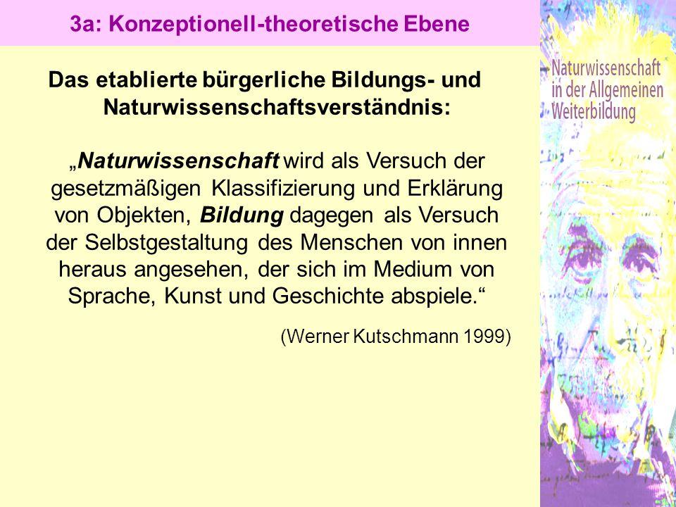 3a: Konzeptionell-theoretische Ebene