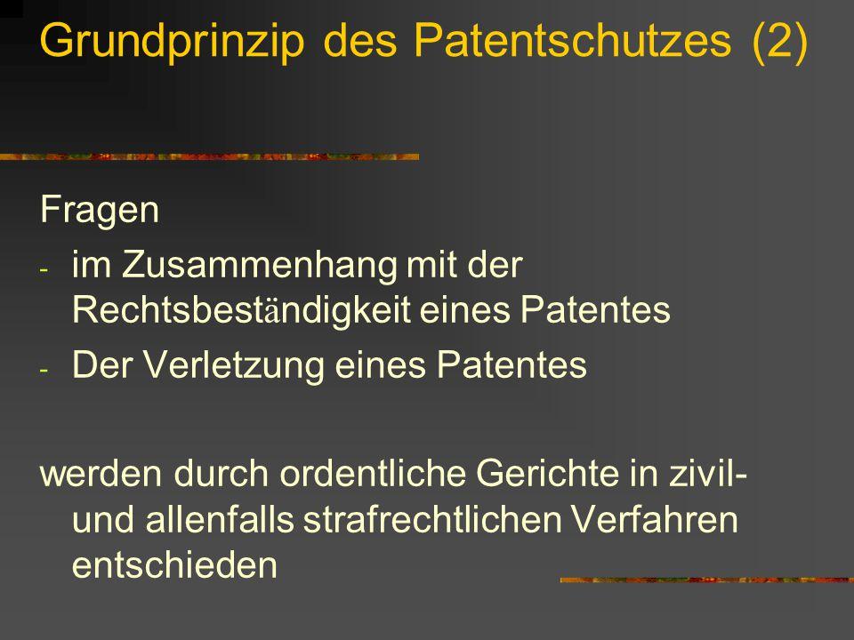 Grundprinzip des Patentschutzes (2)