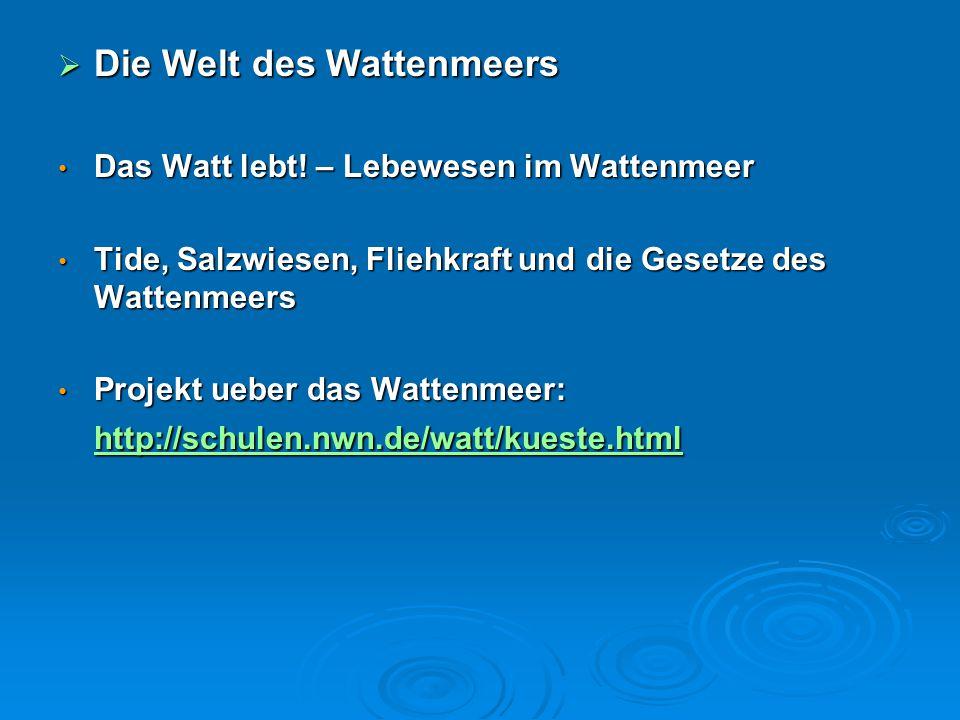 Die Welt des Wattenmeers