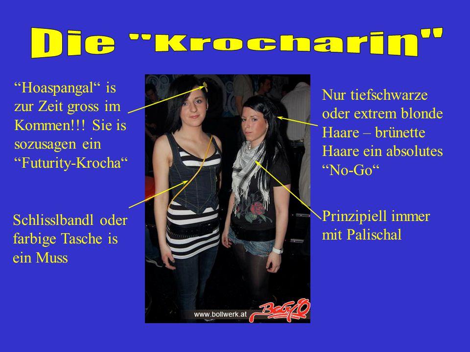 Die Krocharin Hoaspangal is zur Zeit gross im Kommen!!! Sie is sozusagen ein Futurity-Krocha