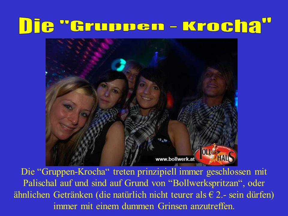 Die Gruppen - Krocha