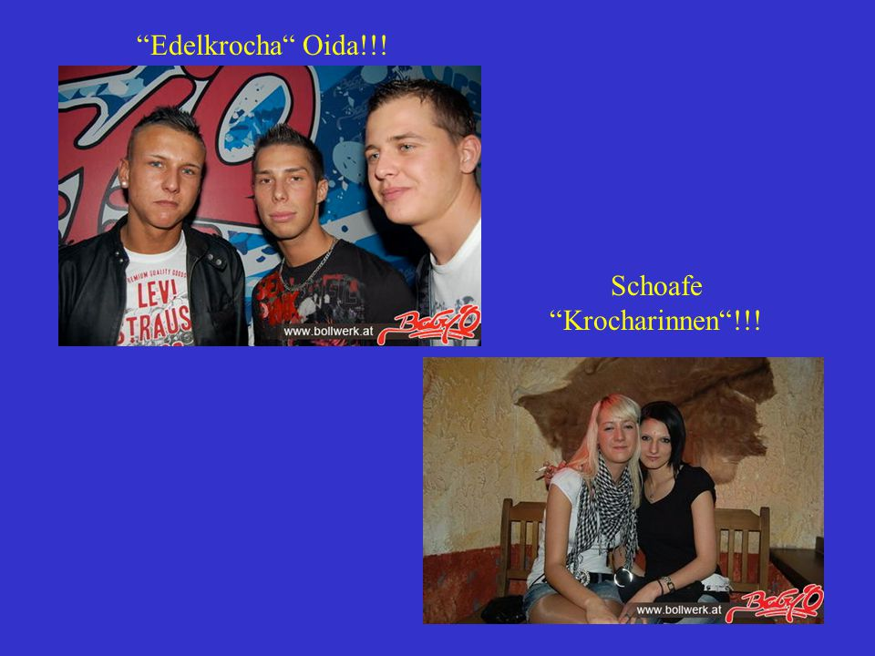 Schoafe Krocharinnen !!!
