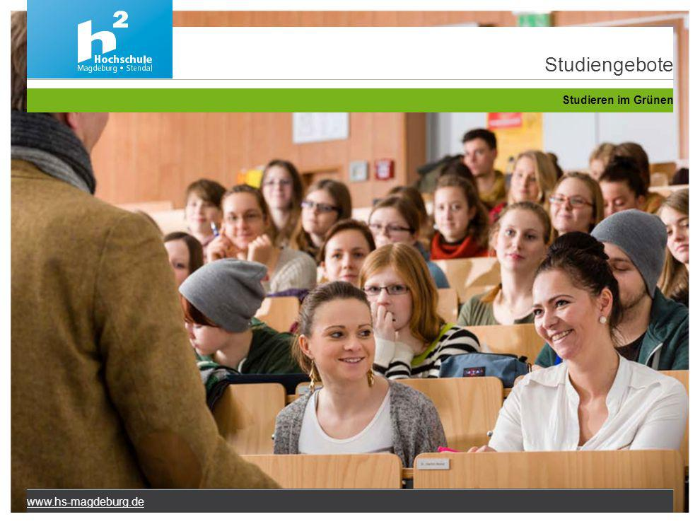 Studiengebote Studieren im Grünen www.hs-magdeburg.de