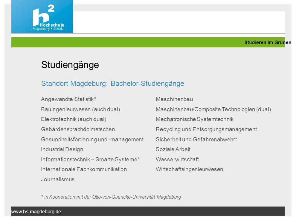 Studiengänge Standort Magdeburg: Bachelor-Studiengänge