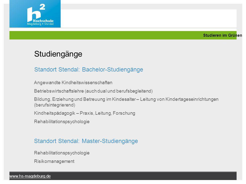Studiengänge Standort Stendal: Bachelor-Studiengänge