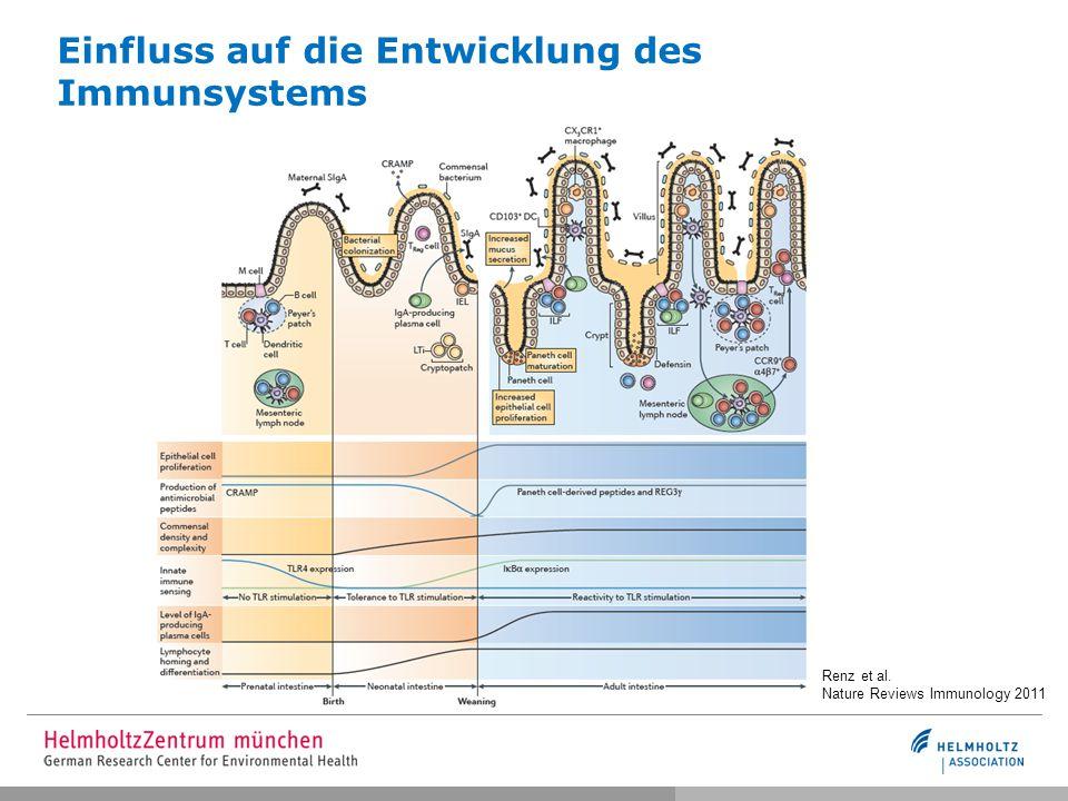 Einfluss auf die Entwicklung des Immunsystems