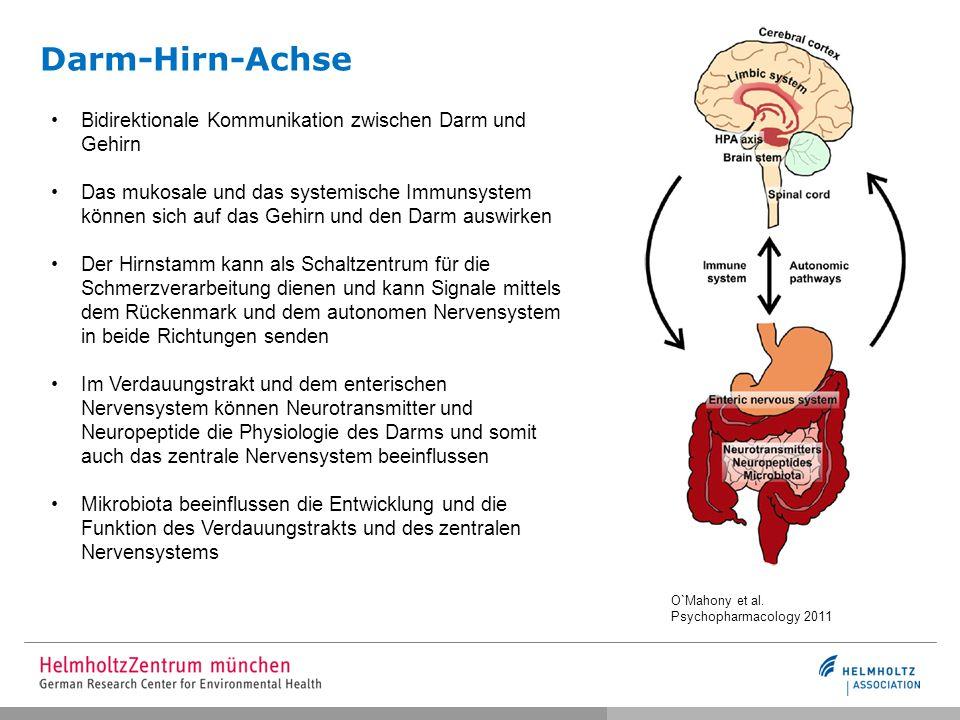Darm-Hirn-Achse Bidirektionale Kommunikation zwischen Darm und Gehirn