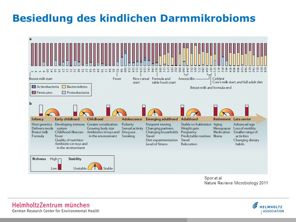 Besiedlung des kindlichen Darmmikrobioms
