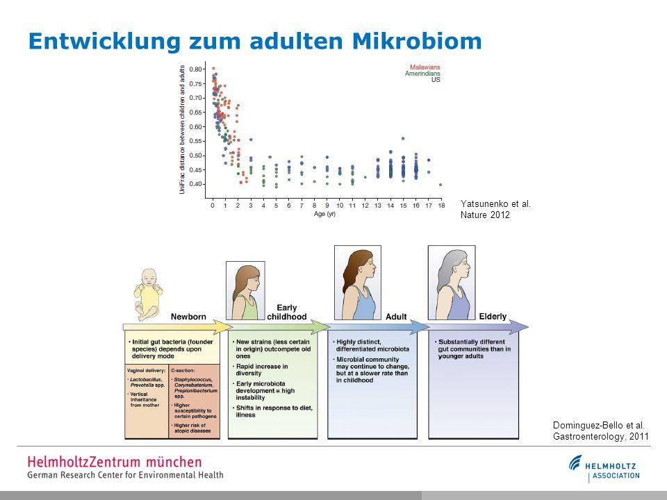 Entwicklung zum adulten Mikrobiom