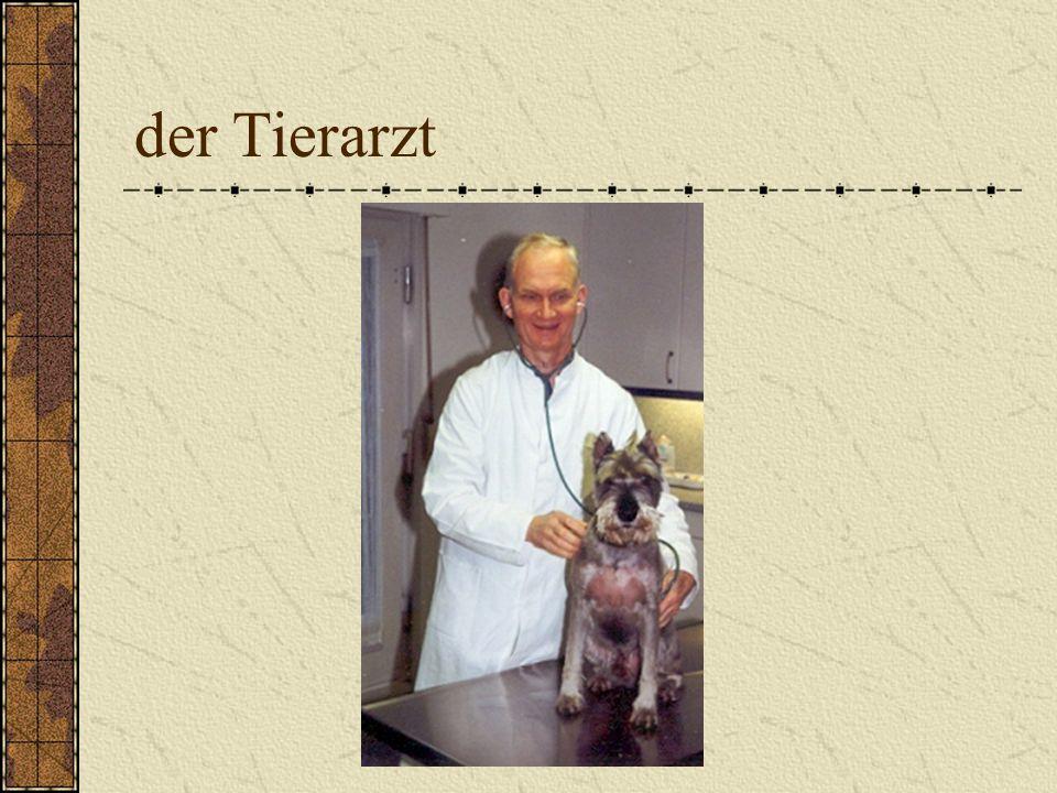 der Tierarzt