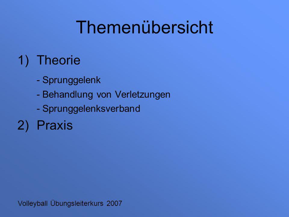 Themenübersicht Theorie - Sprunggelenk Praxis
