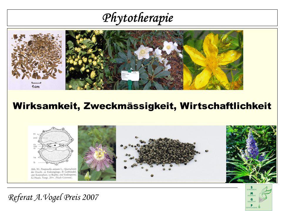 Phytotherapie Wirksamkeit, Zweckmässigkeit, Wirtschaftlichkeit